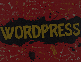 Esperto WordPress developer