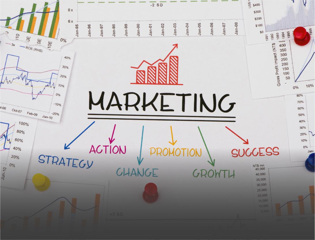 LT – Digital Marketing